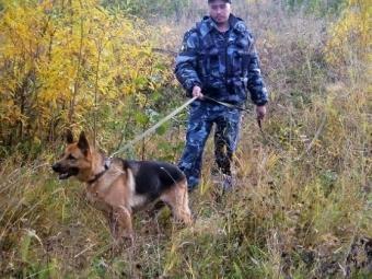 Нижегородские волонтеры ищут пропавшего Александра Рощина