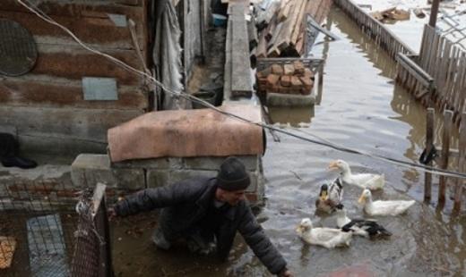 «Большая вода» пришла вАлтайский край: подтоплены 7 сел