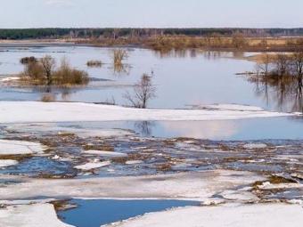 Под Новосибирском начали эвакуацию людей из-за прорыва плотины