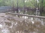 Уровень Новосибирского водохранилища начал поэтапно снижаться