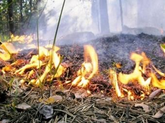 Вести-Иркутск: Режим ЧС введён в Иркутской области из-за лесных пожаров