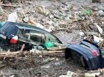 Серебряные запонки президента Грузии проданы впользу жертв наводнения