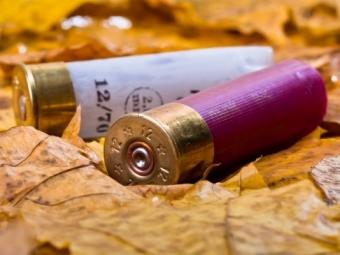 Пенсионер расстрелял всю свою семью изастрелился сам