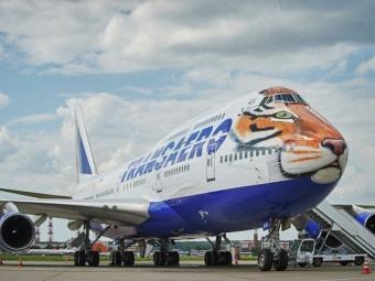 Раскрашенный под тигра самолет начнет летать нароссийских маршрутах
