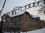 Путин не поедет на юбилей освобождения Освенцима