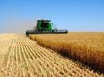ВСтавропольском крае вырос объем сельхозпроизводства