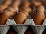 Правительство, возможно, будет регулировать цены надорожающие продукты врегионах