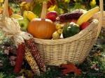 Сельскохозяйственная ярмарка вТюмени заработала более 3 млн рублей