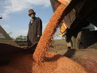 Зернопроизводители не ощущают поддержки государства