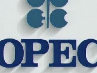 Выручка «Роснефти» за2014 год превысит $146 млрд