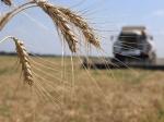 МинсельхозРФ обещал ускорить выплату субсидий для аграриев