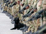 Италия заинтересована ввозобновлении нормального военно-технического сотрудничества сРоссией