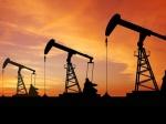 Украина может потерять права нанефтегазодобычу вЕгипте— «Нафтогаз»