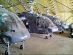 Новые вертолеты «Ансат» и Ка-226Т готовы к использованию в гражданском секторе