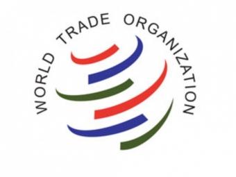 Казахстан завершил переговоры очленстве вВТО
