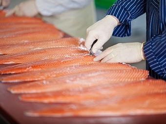 Способы хранения и переработки рыбы