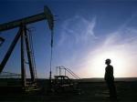 Royal Dutch Shell сравнила геологоразведку в России с игрой в рулетку