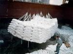 Резко вырос экспорт сахара из Беларуси