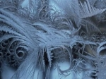 Погода на 15 и 16 декабря в Луганске: похолодает до -17°С