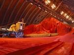 «Белорусская калийная компания» станет исключительным экспортером удобрений