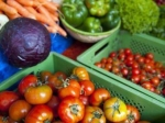 Овощи из Европы вернутся на рынок России