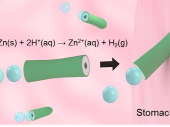 Ученые создали работающие нажелудочном соке наномоторы