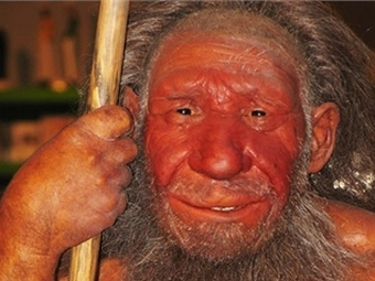 Выводы ученых – все неафриканцы являются потомками неандертальцев