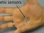 Ученые создали «электронную кожу»