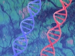 Российские ученые создали белок, заменяющий скальпель