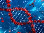 Ученые: Рак кишечника может быть вызван «мусорной» ДНК
