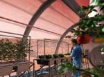NASA: Марсоход может стать огородом для выращивания овощей ифруктов