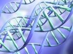 Ученые: ГМО-продукты могут привести кдетскому аутизму