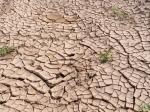Темпы глобального потепления вРоссии выше, чем вмире— Экологи