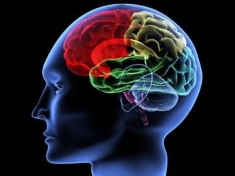 Мужчины теряют память быстрее женщин— Ученые