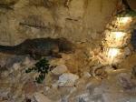 Ученые нашли останки гигантской амфибии-рыбоеда