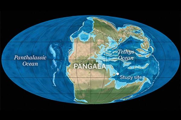 Ученые: из-за вулканов вСибири произошло вымирание животных наЗемле