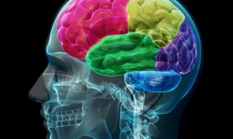 Обнаружена связь между эпилепсией иаутизмом— Ученые