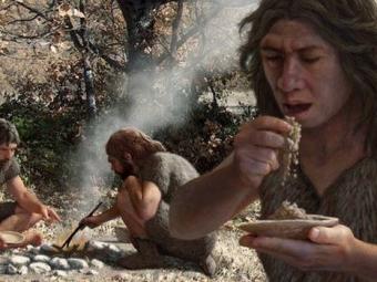 Шимпанзе имеют способности кприготовлению еды— Ученые