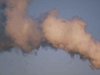 Загрязненный воздух вредит здоровью мозга