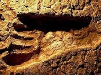 ВКанаде нашли самые древние следы человека, возраст которых неменее 13 Тысяч лет