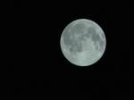 Жители столицы сумеют увидеть «голубую» Луну