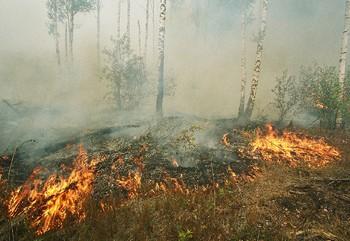 Пожары будут тушить при помощи жидкого стекла