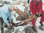 Расшифрован геном ледяного человека Отци
