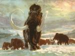 Вымирание плейстоценовой мегафауны оказалось лотереей