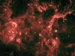 В пузырях Лебедя нашли молодые космические лучи