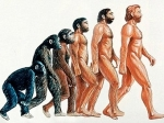А была ли эволюция человека?