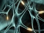 Новое открытие поможет побороть болезнь Альцгеймера
