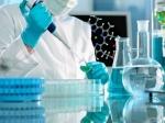 Новосибирские ученые могут диагностировать рак на ранних стадиях