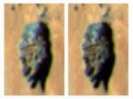 На Марсе найдена голова скульптуры