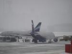 Петербург вШереметьево: Пьяный дебошир вернул самолет Москва